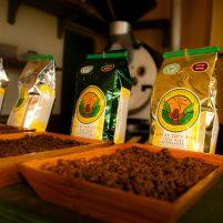 coffee-tour-doka-estate-09